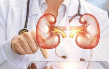 Manipulados Urológicos